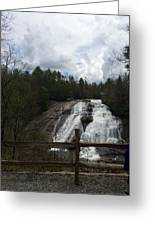 High Falls Dupont State Forest Greeting Card