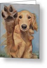 High Five Greeting Card by Jindra Noewi