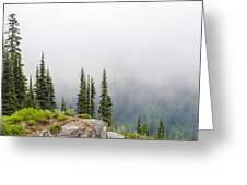 High Forest On Mt. Rainier Greeting Card