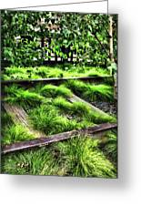 High Line Nyc Railroad Tracks Greeting Card