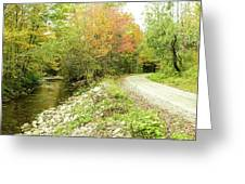High Road Or Low Road. Greeting Card