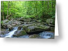 High Shoals Falls Trail In South Mountain Panorama Greeting Card by Ranjay Mitra