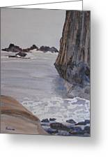 High Tide At Seal Rock Greeting Card