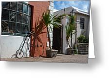 High Wheel Bicycle In Bermuda Greeting Card