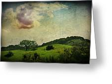 Higher Love Greeting Card by Laurie Search