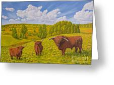 Highland Cattle Pasture Greeting Card