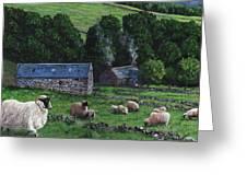 Highland Croft Greeting Card
