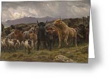 Highland Raid Greeting Card