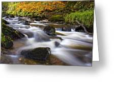 Highland River In Autumn Greeting Card