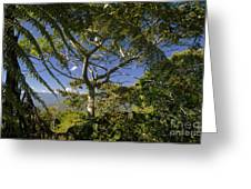 highlands in Costa Rica 2 Greeting Card