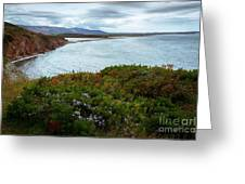 Highlands Of Cape Breton Greeting Card