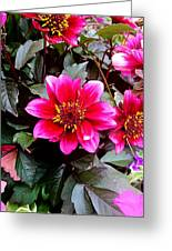 Highlands Ranch Floral Study 1 Greeting Card