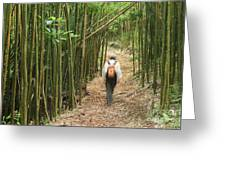 Hiker In Bamboo Forest Greeting Card