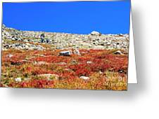 Hikers And Autumn Tundra On Mount Yale Colorado Greeting Card