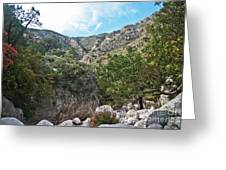 Hiking Guadalupe Greeting Card