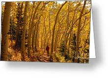 Hiking In Fall Aspens Greeting Card