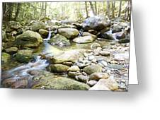 Hiking Near The Trail Greeting Card
