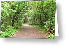 Hiking Trail Along Lewis And Clark River Greeting Card