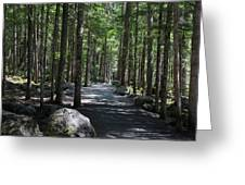 Hiking Trail At Brandywine Falls Provincial Park Greeting Card