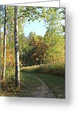 Hiking Trail In Autumn Sunset Greeting Card