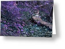 Hiking Trail Infrared Greeting Card