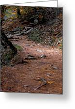 Hiking Trail To Abrams Falls Greeting Card by DigiArt Diaries by Vicky B Fuller