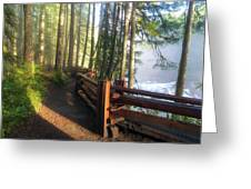 Hiking Trails At Lower Lewis River Trail Greeting Card