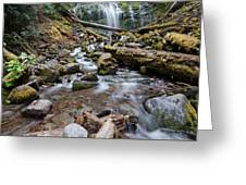 Hiking Zen Forests Greeting Card