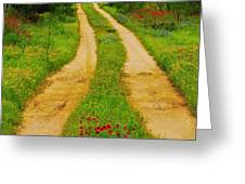 Hill Country Backroad Greeting Card