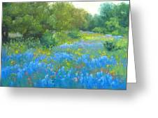 Hill Country Blues Greeting Card