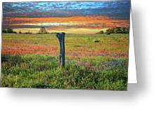 Hill Country Heaven Greeting Card