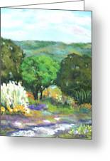 Hill Country II Greeting Card