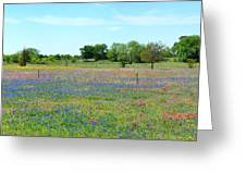 Hill Country Pastel Panorama Greeting Card