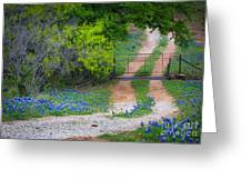 Hill Country Road Greeting Card