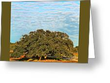 Hill Country Tree  Greeting Card