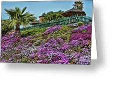 Hill Of Flowers Greeting Card