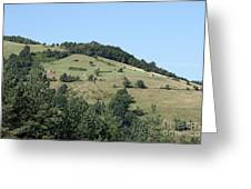 Hill With Haystack And Trees Landscape Greeting Card