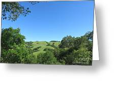 Hills Beyond The Trees Greeting Card