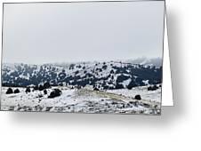 Hills In Fog Greeting Card