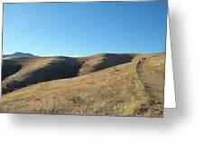Hills Of Colorado Greeting Card