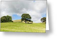 Hills Of Sedbergh Cumbria Greeting Card