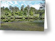 Hillsborough River 1 Greeting Card