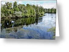 Hillsborough River 7 Greeting Card