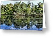 Hillsborough River Panorama 1 Greeting Card