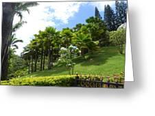 Hillside Copse Greeting Card