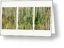 Hillside Forest Greeting Card by Priska Wettstein