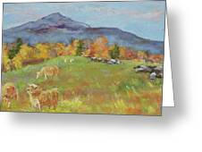 Hillside Grazing Greeting Card
