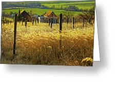 Hillside In Fall Jalaksova, Slovakia Greeting Card