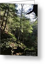 Hillside Landscape Greeting Card