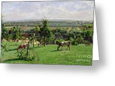 Hillside Of Vesinet Greeting Card